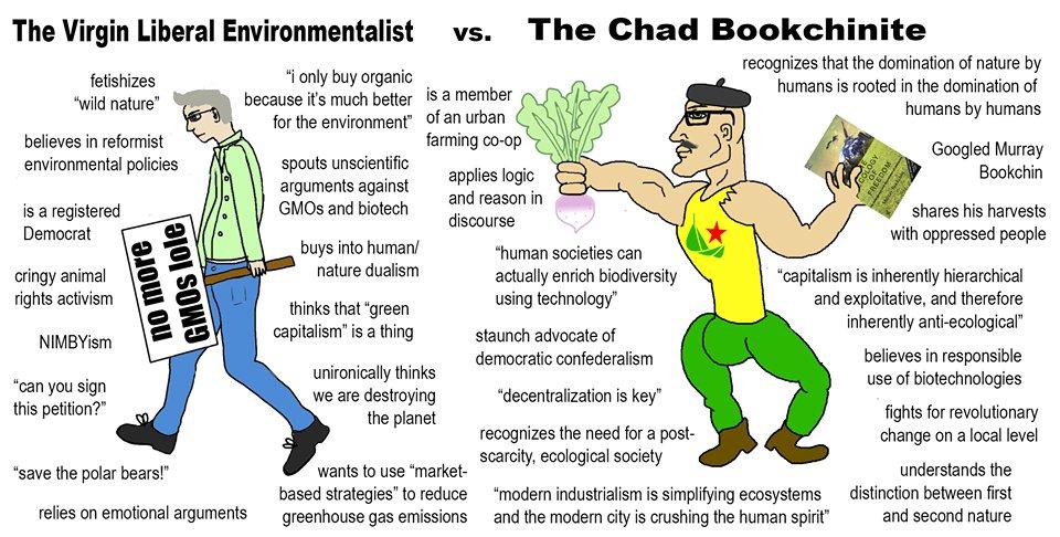 The Virgin Liberal Environmentalist vs. The Chad Bookchinite